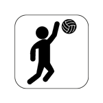 icon_volleyball